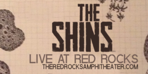 TheShinsbanner.png